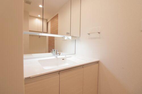 シャワー付きの洗面化粧台です。現地(2021年7月)撮影