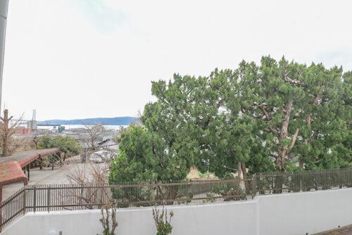 バルコニーからの眺望です。海も見えます。