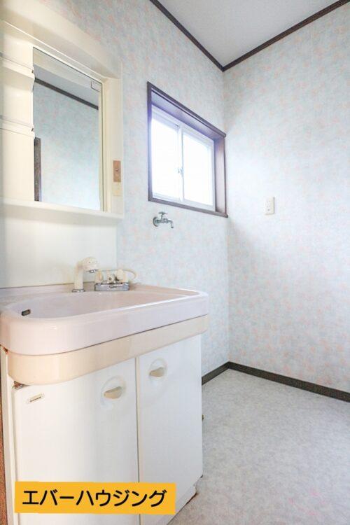 洗面台です。シャワー付きの洗面化粧台です。