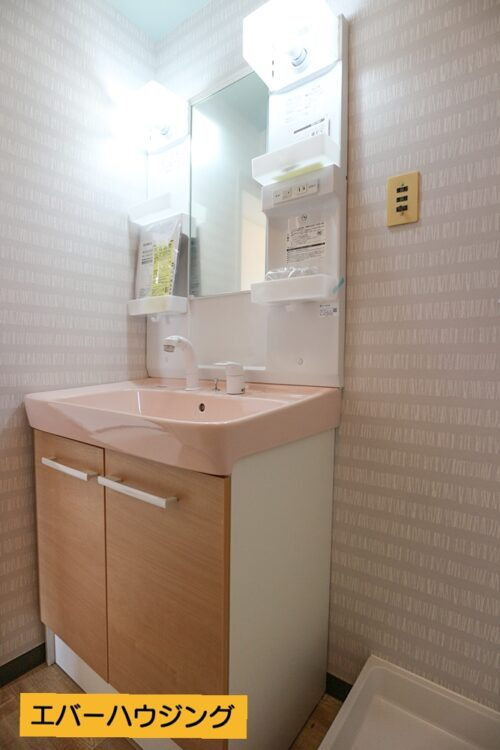 洗面化粧台は新調済み。シャワー付きの洗面化粧台です。