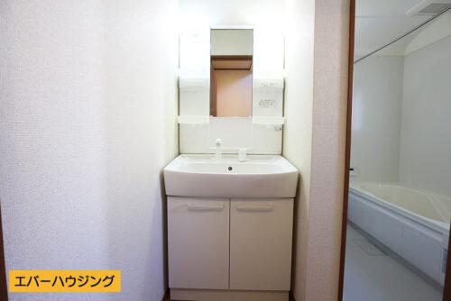 洗面ボウルが大きく、洗面・洗髪などができる機能がある洗髪化粧台。洗髪用のハンドシャワーが付いており浴室に入らなくても簡単に洗髪が出来ます。シャワーの角度を変えて洗面台の掃除もしやすく快適に利用できます