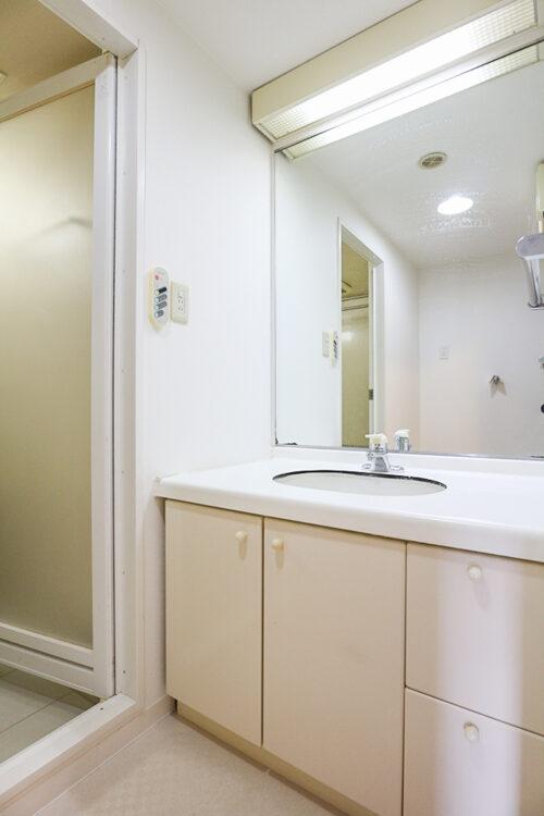 シャワー付きの洗面化粧台です。(2021年4月27日)撮影