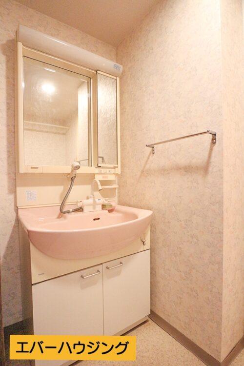 シャワー付きの洗面化粧台です(2021年4月30日)撮影