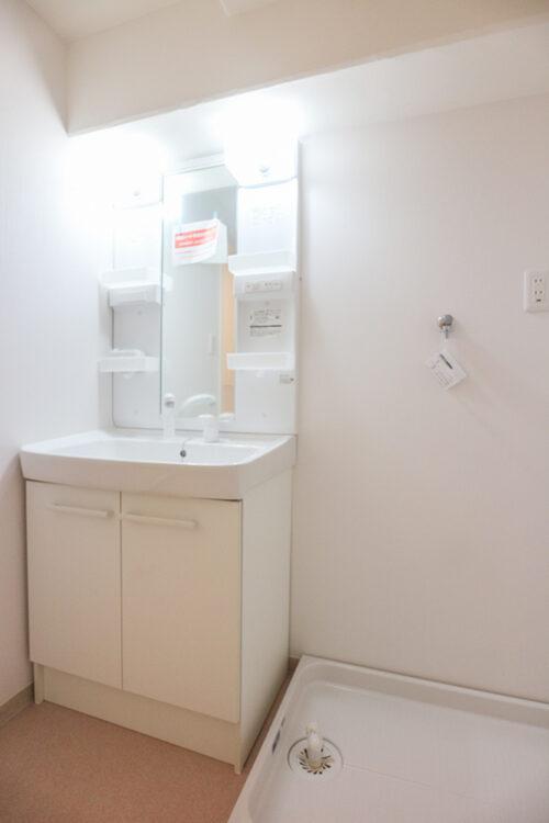 シャワー付きの洗面化粧台です。リフォームにて新調済み。現地(2021年7月)撮影