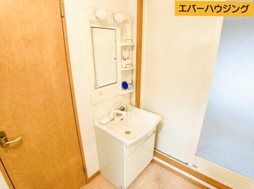 シャワー付きの洗面化粧台です。