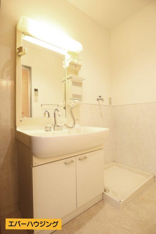 忙しい朝に嬉しいシャワー付きの独立洗面化粧台。