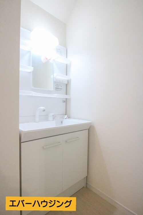 忙しい朝の身支度に嬉しいシャワー付きの洗面化粧台です。