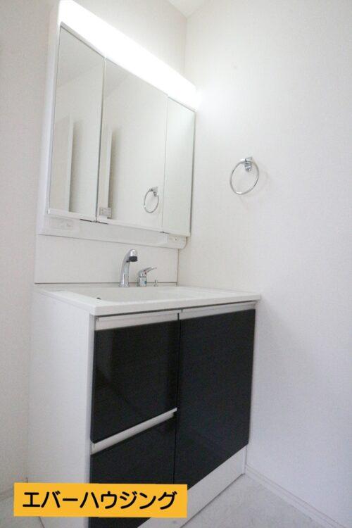 忙しい朝に嬉しいシャワー付き洗面台です。