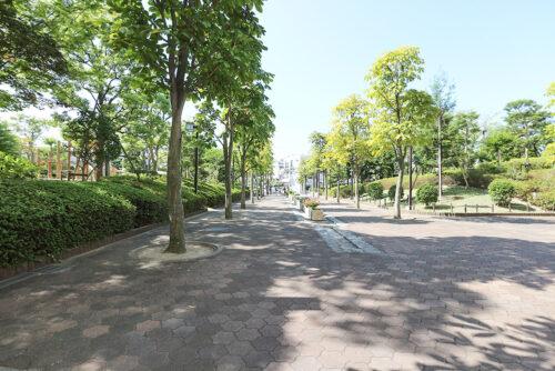 敷地内の街路樹。広々ゆったり♪