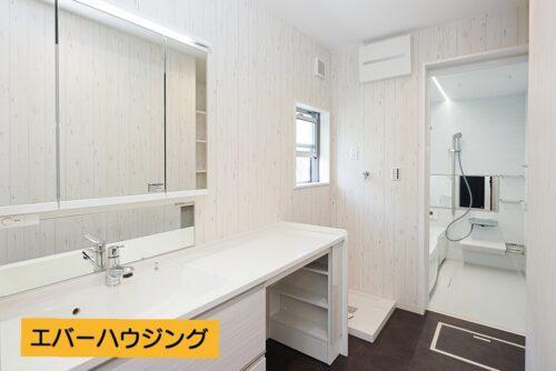 【同形状・同仕様の写真です】シャワー付きの洗面化粧台です。